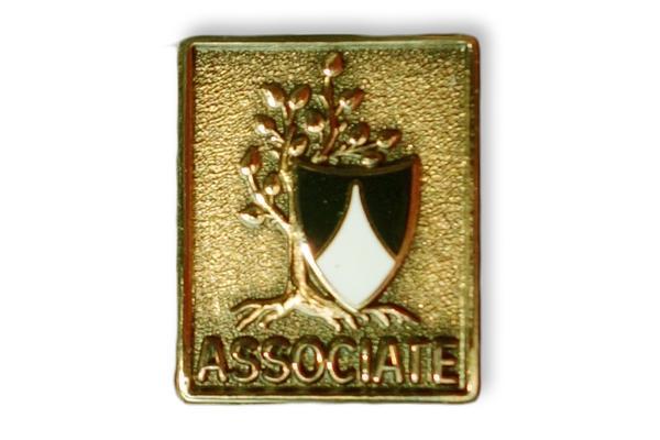 Associate pin